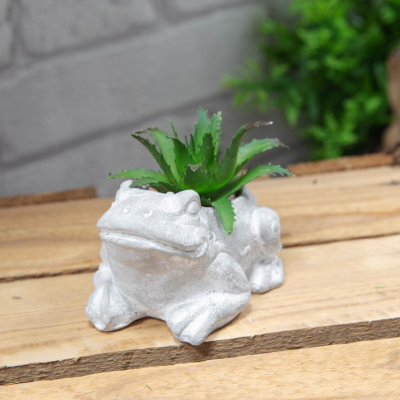 MINI FROG PLANTER WITH SUCCULENTS